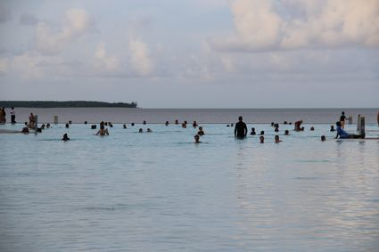 cairns_lagoon_closeup